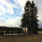 pomnik-adampol-(1)