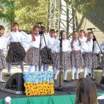 festiwal-okuninka-kopia